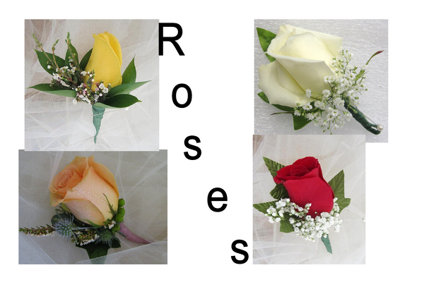 Choose Your Color Prom Boutonnier from Joseph Genuardi Florist in Norristown, PA