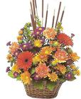 Autumn Harvest Basket Arrangment from Joseph Genuardi Florist in Norristown, PA