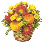 Pumpkin Pie Basket from Joseph Genuardi Florist in Norristown, PA