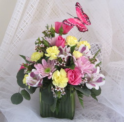 Butterfly Garden Cube from Joseph Genuardi Florist in Norristown, PA
