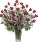 24 Plus Red Rose Vase Arrangement from Joseph Genuardi Florist in Norristown, PA