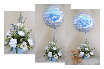 Special Delivery Baby Arrangement Boy or Girl from Joseph Genuardi Florist in Norristown, PA