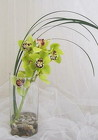Tropical Umbrella Cymbidium Orchid Vase from Joseph Genuardi Florist in Norristown, PA
