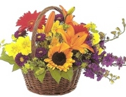 Mixed Garden Basket from Joseph Genuardi Florist in Norristown, PA
