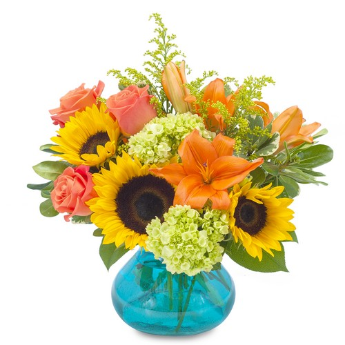 Sunshine Day from Joseph Genuardi Florist in Norristown, PA