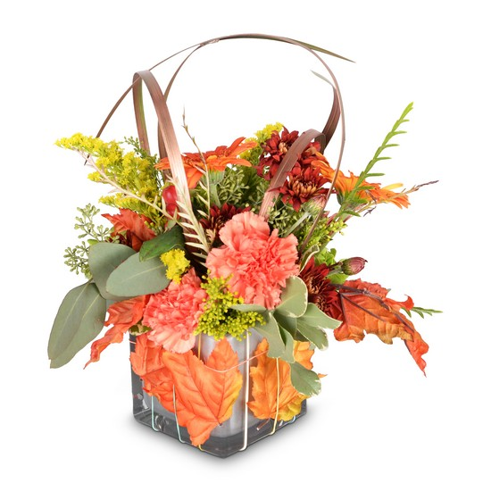 You're Unbe-leaf-able! from Joseph Genuardi Florist in Norristown, PA