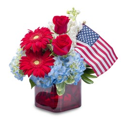 Independence from Joseph Genuardi Florist in Norristown, PA