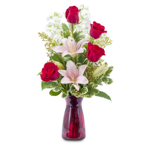 Tender Love from Joseph Genuardi Florist in Norristown, PA