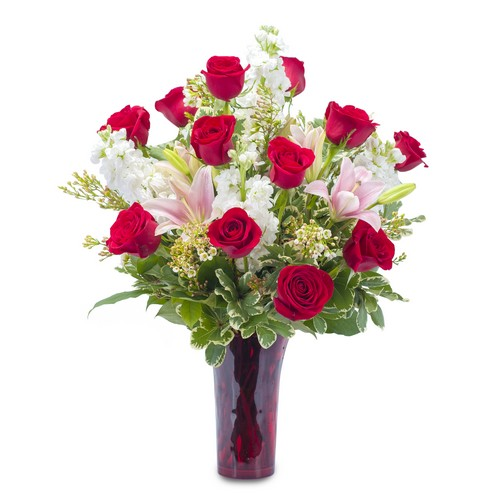 Tender Passion from Joseph Genuardi Florist in Norristown, PA