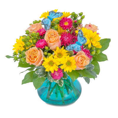 Flutter Days from Joseph Genuardi Florist in Norristown, PA