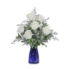 Roses in Blue from Joseph Genuardi Florist in Norristown, PA