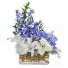 Majestic Blue from Joseph Genuardi Florist in Norristown, PA
