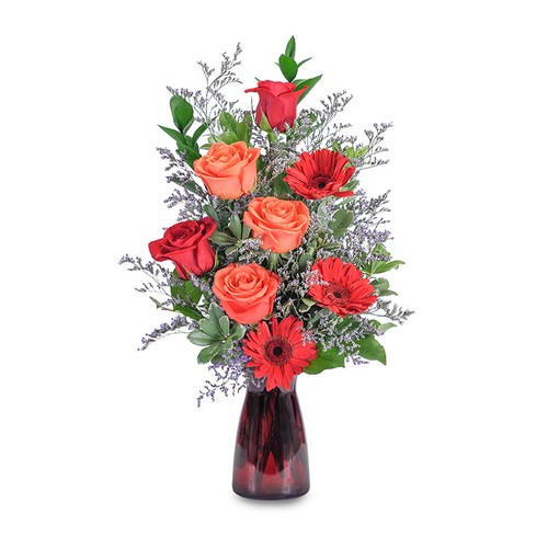 Scarlet Crush from Joseph Genuardi Florist in Norristown, PA