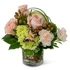 Expressions of Gratitude from Joseph Genuardi Florist in Norristown, PA
