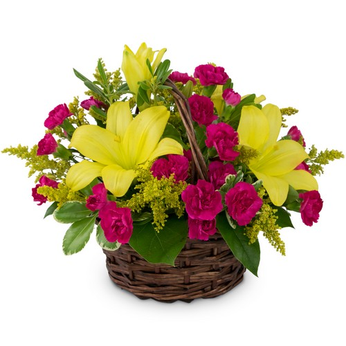 Sweet as Summer from Joseph Genuardi Florist in Norristown, PA