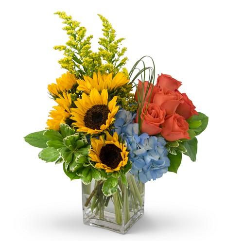 Fun in the Sun from Joseph Genuardi Florist in Norristown, PA