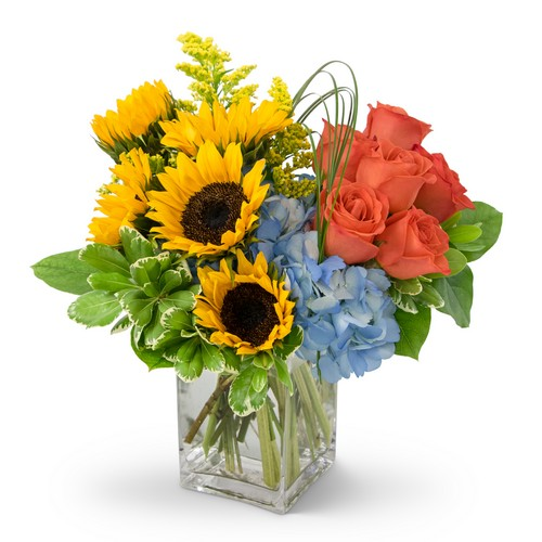 Summer Fun from Joseph Genuardi Florist in Norristown, PA