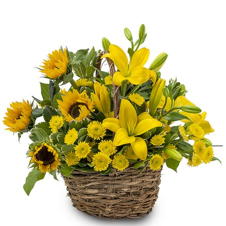 Basket of Sunshine from Joseph Genuardi Florist in Norristown, PA