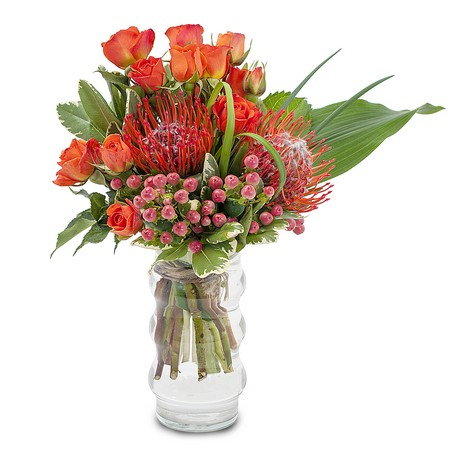 Beat the Heat from Joseph Genuardi Florist in Norristown, PA