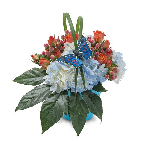 Berries in Blue from Joseph Genuardi Florist in Norristown, PA