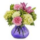 Cuddle Up from Joseph Genuardi Florist in Norristown, PA