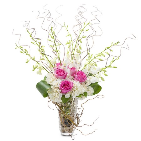 Graceful Willow from Joseph Genuardi Florist in Norristown, PA