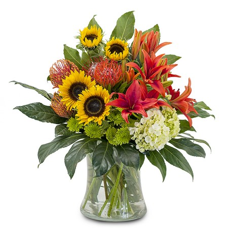 Harvest Sun from Joseph Genuardi Florist in Norristown, PA