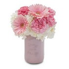 Simple Blush from Joseph Genuardi Florist in Norristown, PA