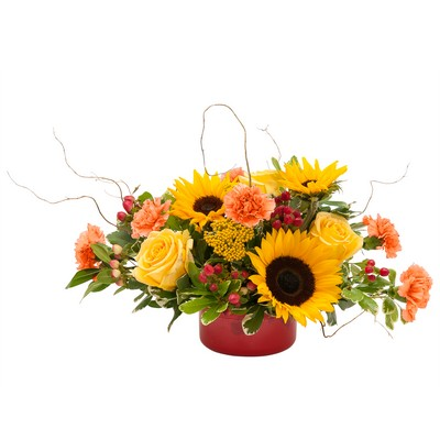 Harvest Garden from Joseph Genuardi Florist in Norristown, PA