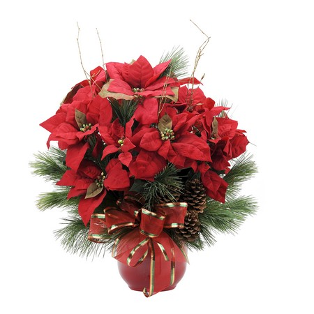 Grand Poinsettia from Joseph Genuardi Florist in Norristown, PA