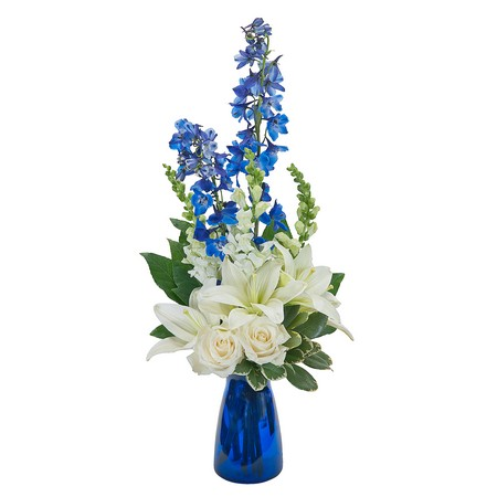 Blue Vibrations from Joseph Genuardi Florist in Norristown, PA