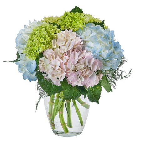 Southern Charm from Joseph Genuardi Florist in Norristown, PA