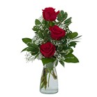 Simply Roses from Joseph Genuardi Florist in Norristown, PA