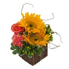 Naturally Simple from Joseph Genuardi Florist in Norristown, PA