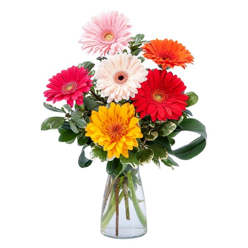 Colorful! from Joseph Genuardi Florist in Norristown, PA