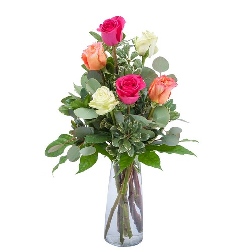 Six Roses from Joseph Genuardi Florist in Norristown, PA
