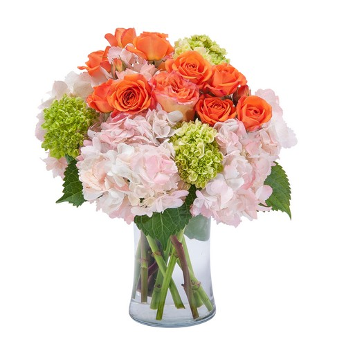 Beauty in Blossom from Joseph Genuardi Florist in Norristown, PA