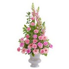 Peaceful Pink Large Urn from Joseph Genuardi Florist in Norristown, PA
