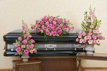Peaceful Pink Trio from Joseph Genuardi Florist in Norristown, PA