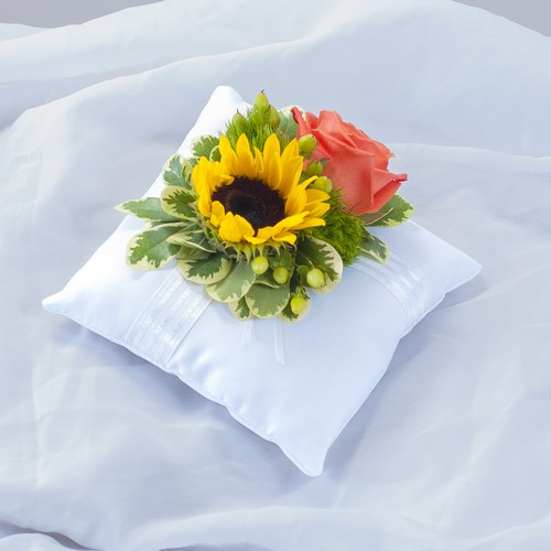 Sunset Pillow Insert from Joseph Genuardi Florist in Norristown, PA