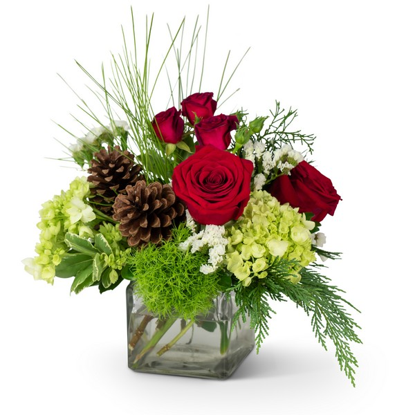 Wintertime  Warmth from Joseph Genuardi Florist in Norristown, PA