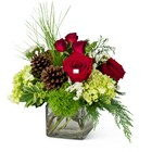 Wintertime Wishes from Joseph Genuardi Florist in Norristown, PA