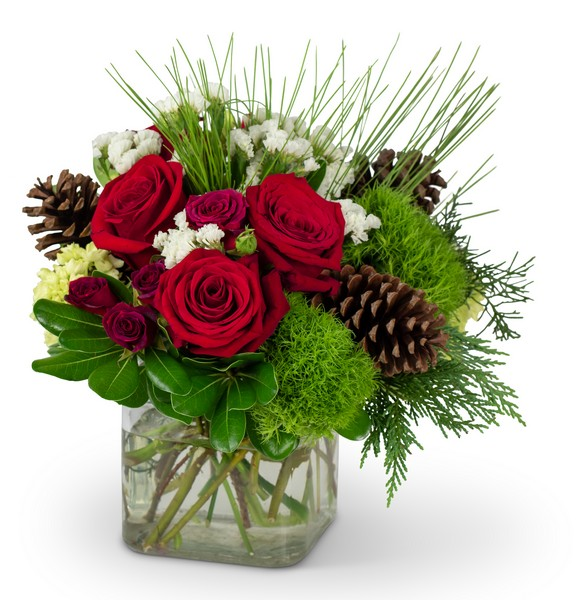 Wintertime Blooms from Joseph Genuardi Florist in Norristown, PA
