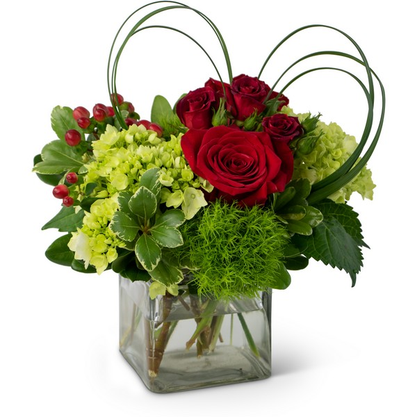 Daily Love from Joseph Genuardi Florist in Norristown, PA