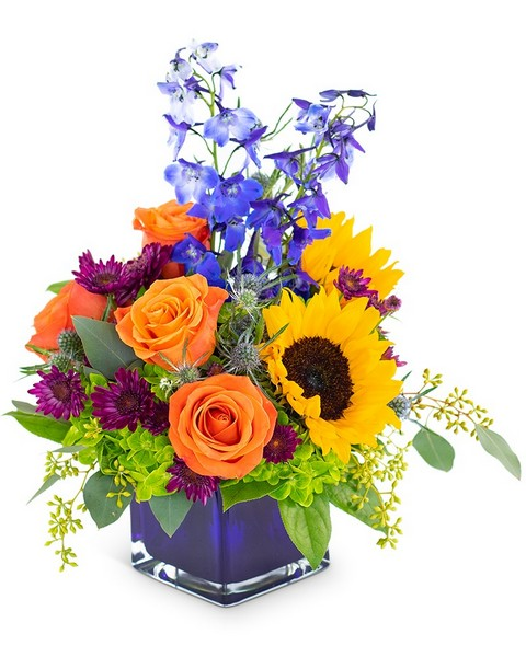 Season of Us from Joseph Genuardi Florist in Norristown, PA