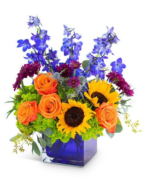 Season of Gratitude from Joseph Genuardi Florist in Norristown, PA