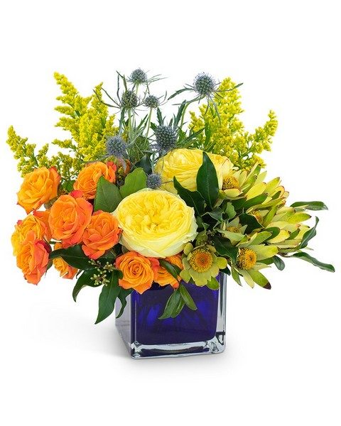 Bloom with Brilliance from Joseph Genuardi Florist in Norristown, PA