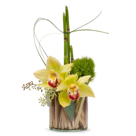 Simplicity from Joseph Genuardi Florist in Norristown, PA