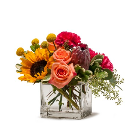 Flower Fun from Joseph Genuardi Florist in Norristown, PA