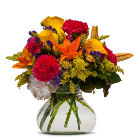 Hot Fever from Joseph Genuardi Florist in Norristown, PA
